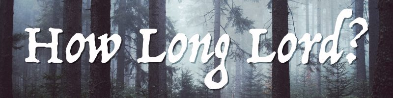 Image result for HOW LONG MUST I WAIT LORD?